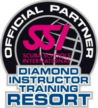 divebvi_SSI-Diamond-Inst-Tr-Resort- SMALL