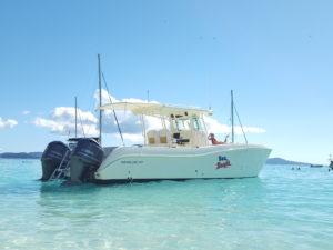 Sea Bandit on charter