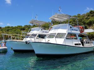 Sea Monkey and Sea Dragon at Cooper Island