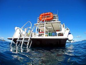 Sea Monkey stern