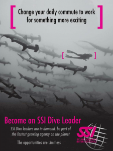 SSI-Dive-Leader