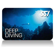 SSI Deep Diver card