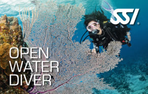 SSI Open Water Diver card